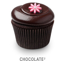 Chocolate Cupcakes - One Dozen