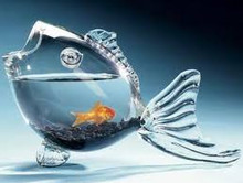 Clear Fish Shaped Fish Bowl - so unique!