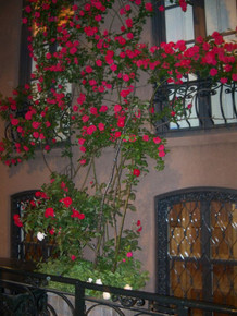 Custom Wrought Iron Window Box Planter - many sizes, designs