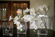 Niche Glass Vases, multiple sizes