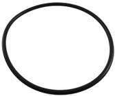 "WATERWAY | O-RING FOR 2"" UNION CONNECTOR 