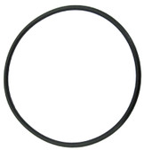 "BALBOA/VICO | O-RING FOR 2"" UNION 