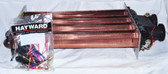 HAYWARD | HEAT EXCHANGER ASSEMBLY - 350 | HAXHXA1353