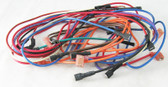 HAYWARD | WIRE HARNESS ASSY IID SNGLE T'ST | HMX WHA 2933