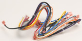 HAYWARD | MAIN WIRE HARNESS | HAXWHA0008