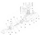 SPECK | DRAIN PLUG GASKET | 5829110013