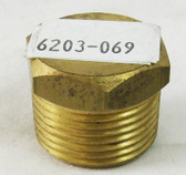 "HAYWARD | BRASS, 3/4"" MPT | 6203-069"