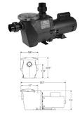 WATERWAY | STANDARD EFFICIENCY - UP RATED PUMPS - SINGLE SPEED | CHAMPS-107