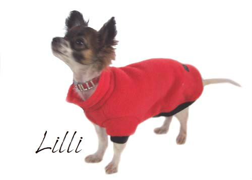 gallery-lilli-red-jumper500.jpg