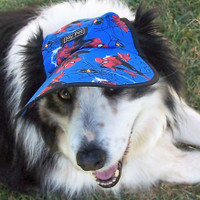 Molly - large Spiderman dog hat