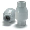 "1"" PVC Swing Check Valve Threaded"