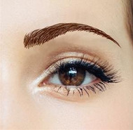 Beauty Eyebrows #3- Medium Brown