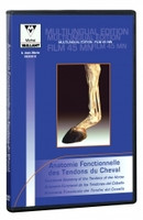 "DVD ""Functional anatomy of the tendon of the horses"""