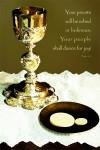 Robe in Holiness - Golden Jubilee
