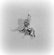 Baby Crawling Charm