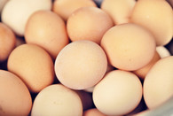 Pastured Eggs (1 Dozen)