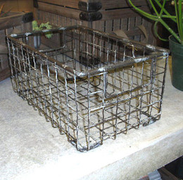 Metal Wire Gym Baskets (set of two)