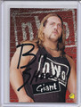 Giant Autographed Wrestling Card 2071