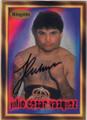 JULIO CESAR VASQUEZ AUTOGRAPHED BOXING CARD #62714H
