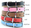 Genuine leather Dog collar JJJ017