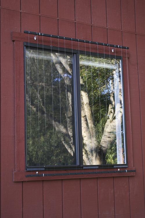 Installation Is Easy - Window decals to prevent bird strikes