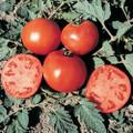 Celebrity F1 Tomato Seeds
