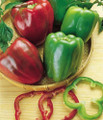 Calwonder Bell Pepper Seeds