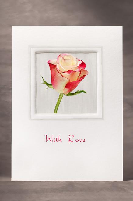 Rose FF20-NC