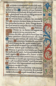 "M6102 Single leaf from a Printed Book of Hours, in Latin, on vellum.  Versal initials hand-painted in liquid gold on a ground of blue or rust.  Hand-illuminated border of flowers, leaves, and fronds on a ground of liquid gold.  Two-line initial ""D"" opens Psalm 6, ""Domine ne in furore….""  Paris, c 1510.  Size: 5 ¾ x 3 ¾ inches.   Mat size: 8 x 10 inches"