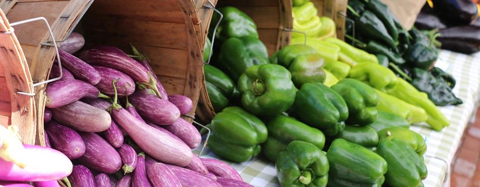 Eggplant and pepper assortment