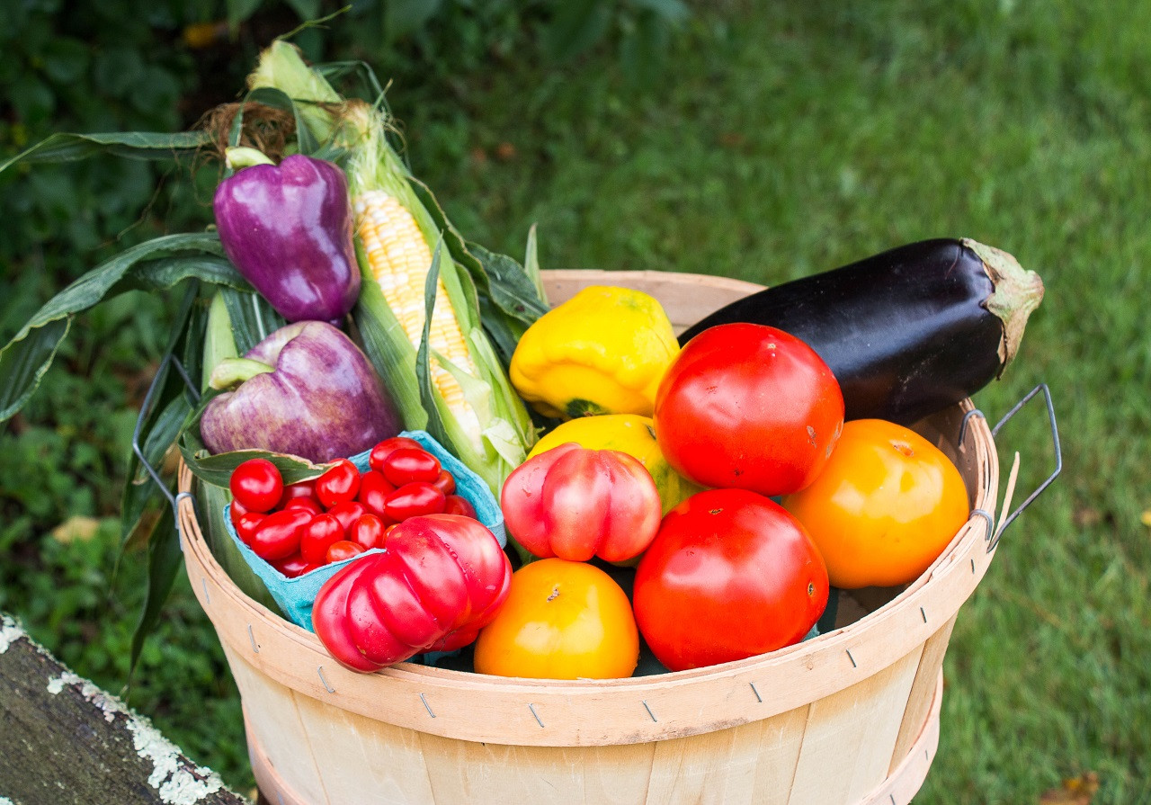 18 week's of produce.  Picking up once a week in Woodbury or New Milford.  From our Farm to your Table. Eat Healthy - Eat Local - Everyday Feel good you know your helping sustain our local farm & family.