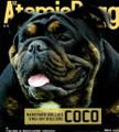 Atomic Dogg Magazine #30