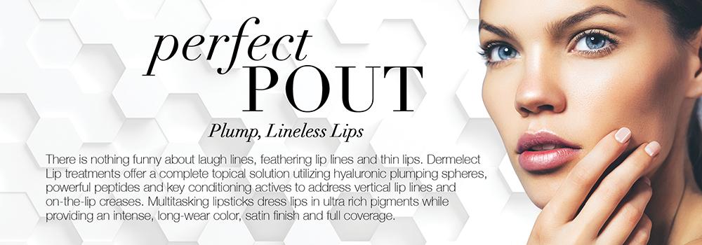 lipsperfectpoutbanner.jpg