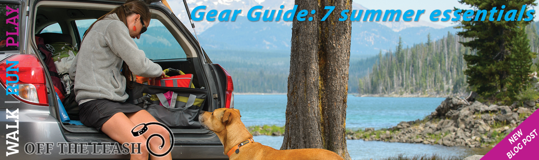 Gear Guide: 7 Summer essentials for your dog | K9active Dog Blog