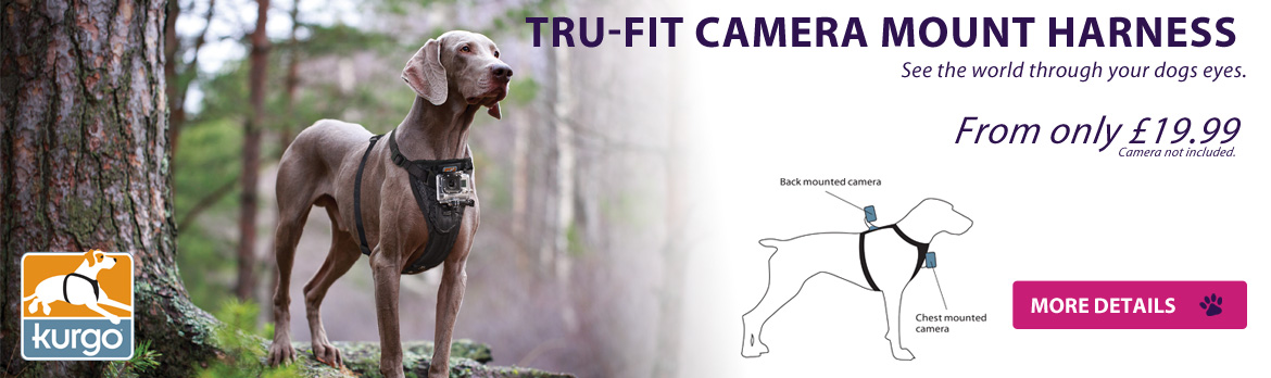 Capture your dogs view with the Kurgo Tru-Fit Camera Harness