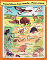Crow Plains Animals