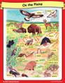 Mandan Plains Animals