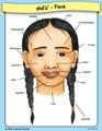 Arikara Face