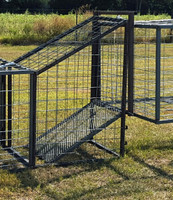 CORRAL TRAP LOADING RAMP