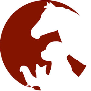ARIZONA HORSE TACK