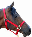Great 2-3 ply Soft nylong halter more mostly arab to sm. qtr. Horse Available in many colors. Many other lead rope colors to match. See product #801