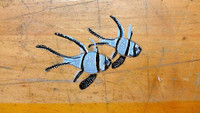 Banggai Cardinalfish Handpainted Red Wine Glass
