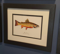 Framed Open Edition Brook Trout Print