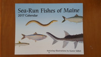 2017 Sea-Run Fishes of Maine Calendar