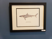 WYSIWYG Great White Shark Print (Frame Scratched)