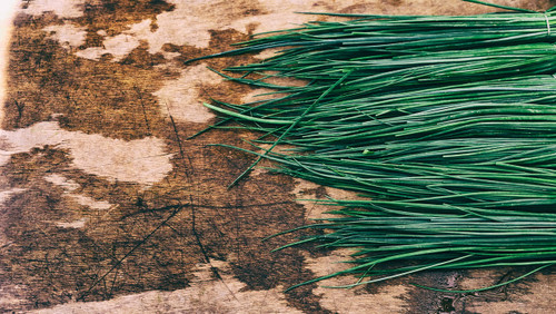 Herb Chive Seeds