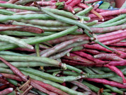 Pink Eyed Purple Hulled Pea Seeds QTY. 50