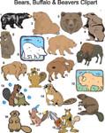 Bear, Buffalo, & Beaver Clipart