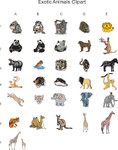Exotic Animal Clipart