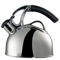 OXO Good Grips Uplift Polished Tea Kettle - Induction Compatible